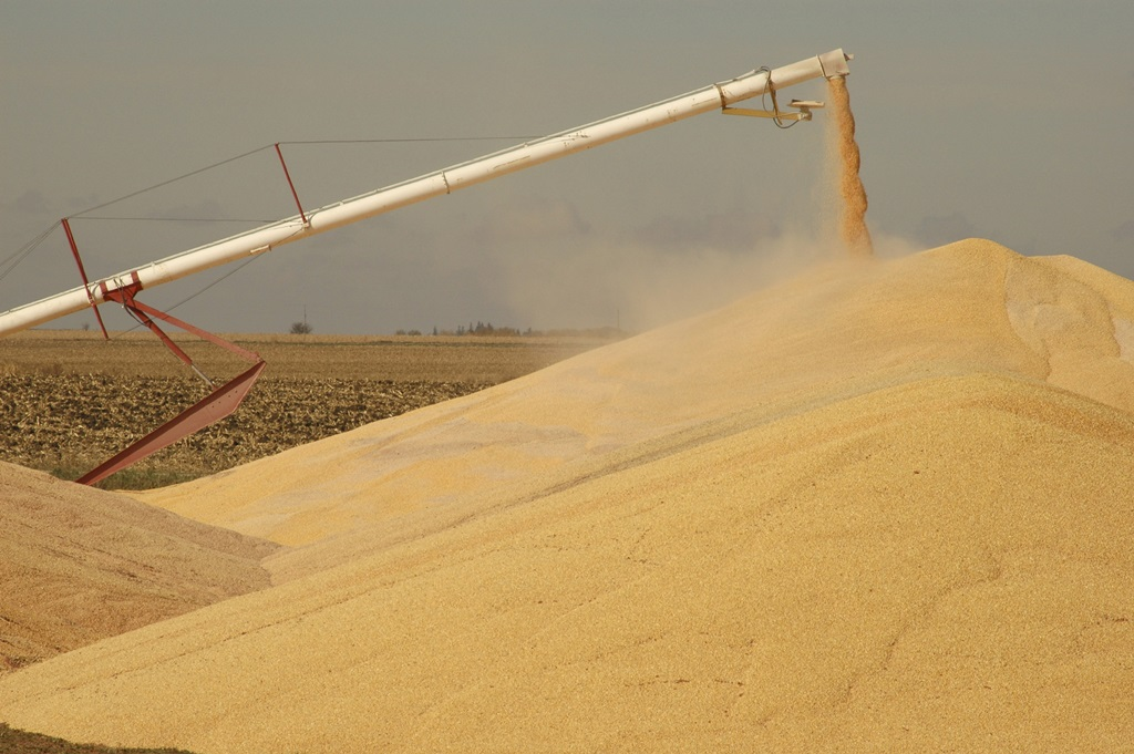 USDA Weekly Crop Progress- Corn Harvest Makes Up More Ground