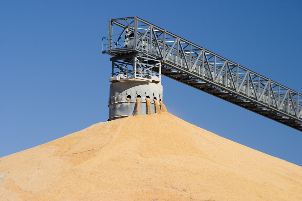 USDA Increases Corn and Soybean Stocks