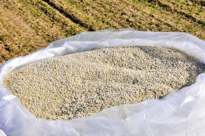 Mosaic Cuts Fertilizer Production