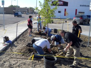 Tree plantings underway in downtown Scottsbluff
