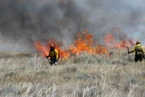 Prescribed burns planned at Agate Fossil Beds