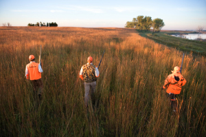 Hunter Sentenced In Kansas Bird Hunting Case
