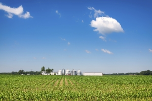 Farmland Prices Fall in Much of Central U.S.