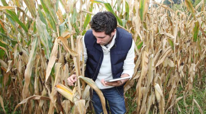 Thinkstock/Agronomist Research/Istock