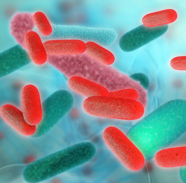 Confirmed Cases of Salmonella in West Point up to 20