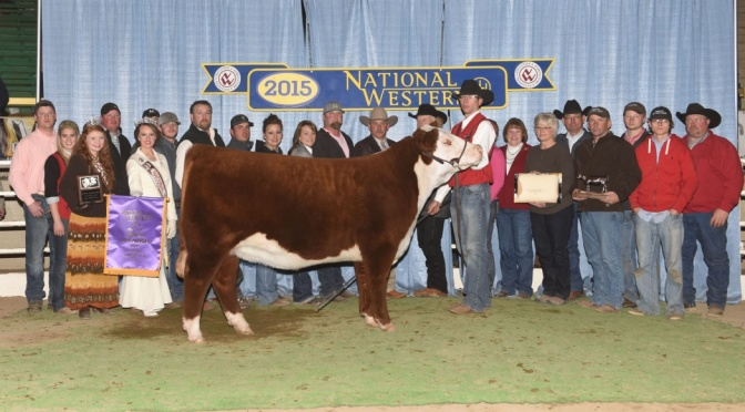 COURTESY_AMERICAN HEREFORD ASSOCIATION