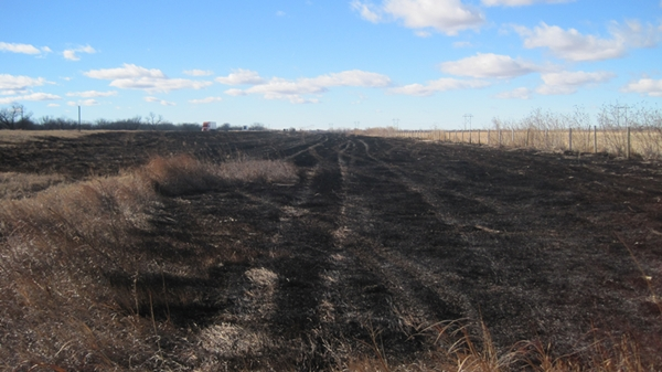 Grass fires charred three separate stretches along the westbound ditch of Interstate-80 east of Lexington Saturday evening