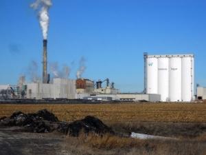 Nebraska plant giving away tons of rotten sugar beets