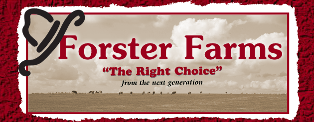 Forster Farms