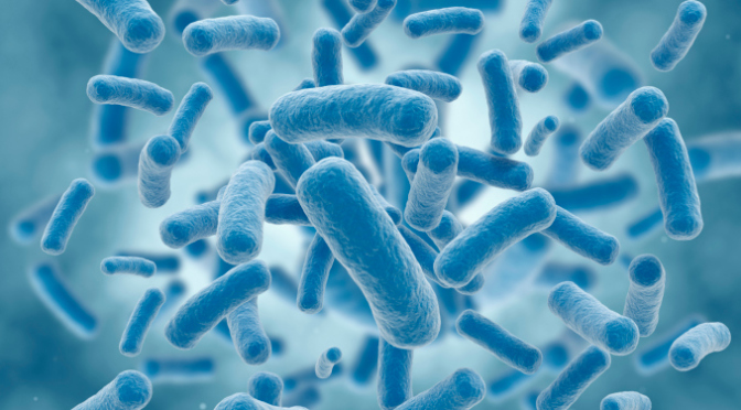 COURTESY_THINKSTOCK_E. COLI_ISTOCK