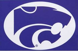 K-State Renames Computer Network From iSIS