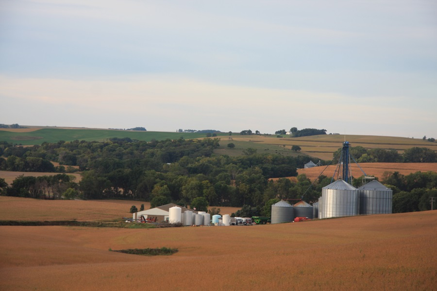 U.S. Cropland Value Holds Steady