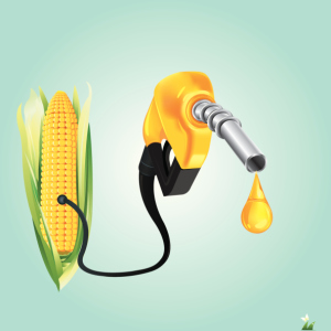 Ricketts touts economic benefits of ethanol during Renewable Fuels Month
