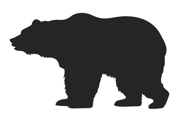 3 bears euthanized outside Wyoming's main grizzly habitat