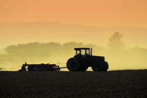 USDA Corn and Soybean Plantings Forecast Increases