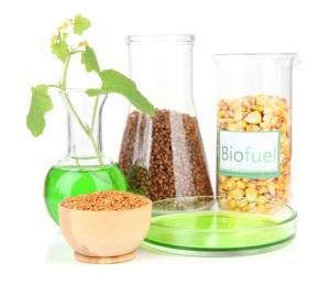 Biofuels Grow Nebraska