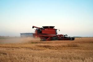 Kansas Wheat Cutting Making Spotty Progress