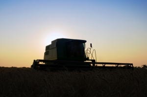 Day 10, Kansas Wheat Harvest Report