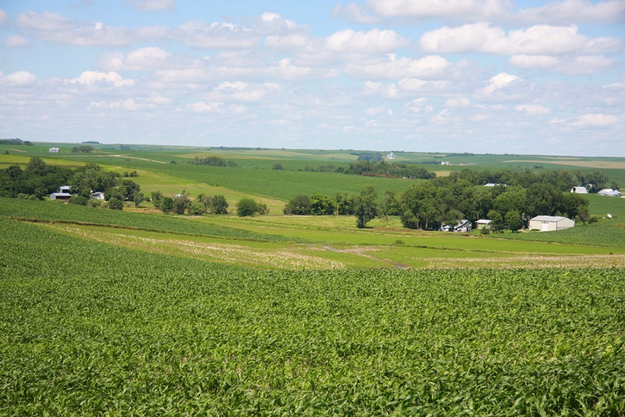 Ag Land Property Values Have Dropped According to Report
