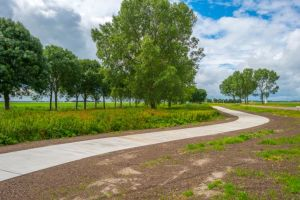 Rural Mainstreet Economy Expands for June