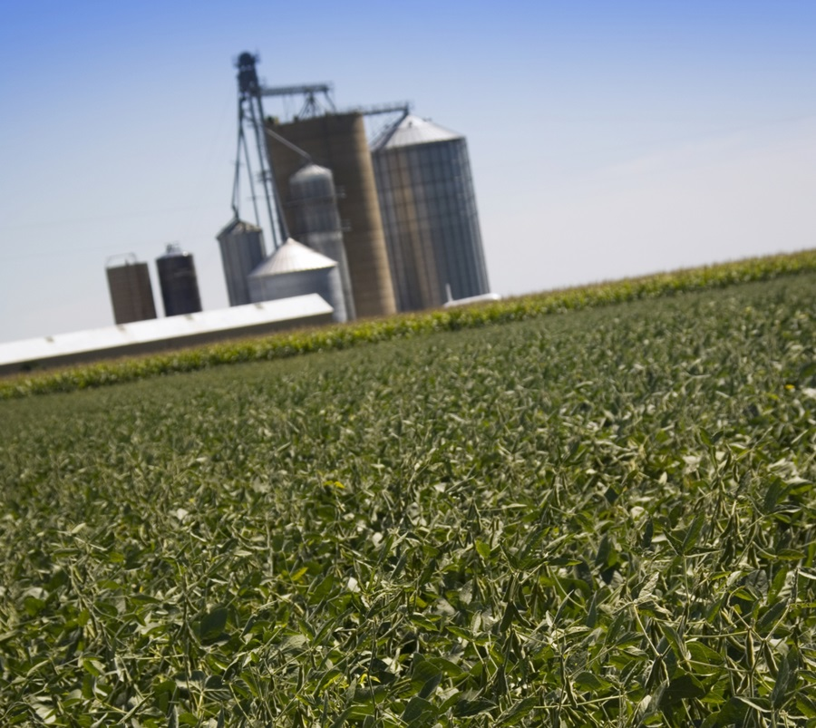 USDA Forecasts Increase in Farm Income