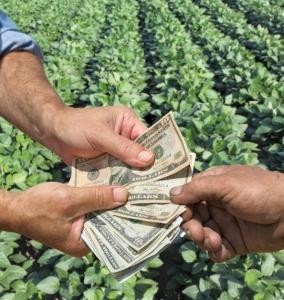 USDA Predicts Net Farm Income Increase