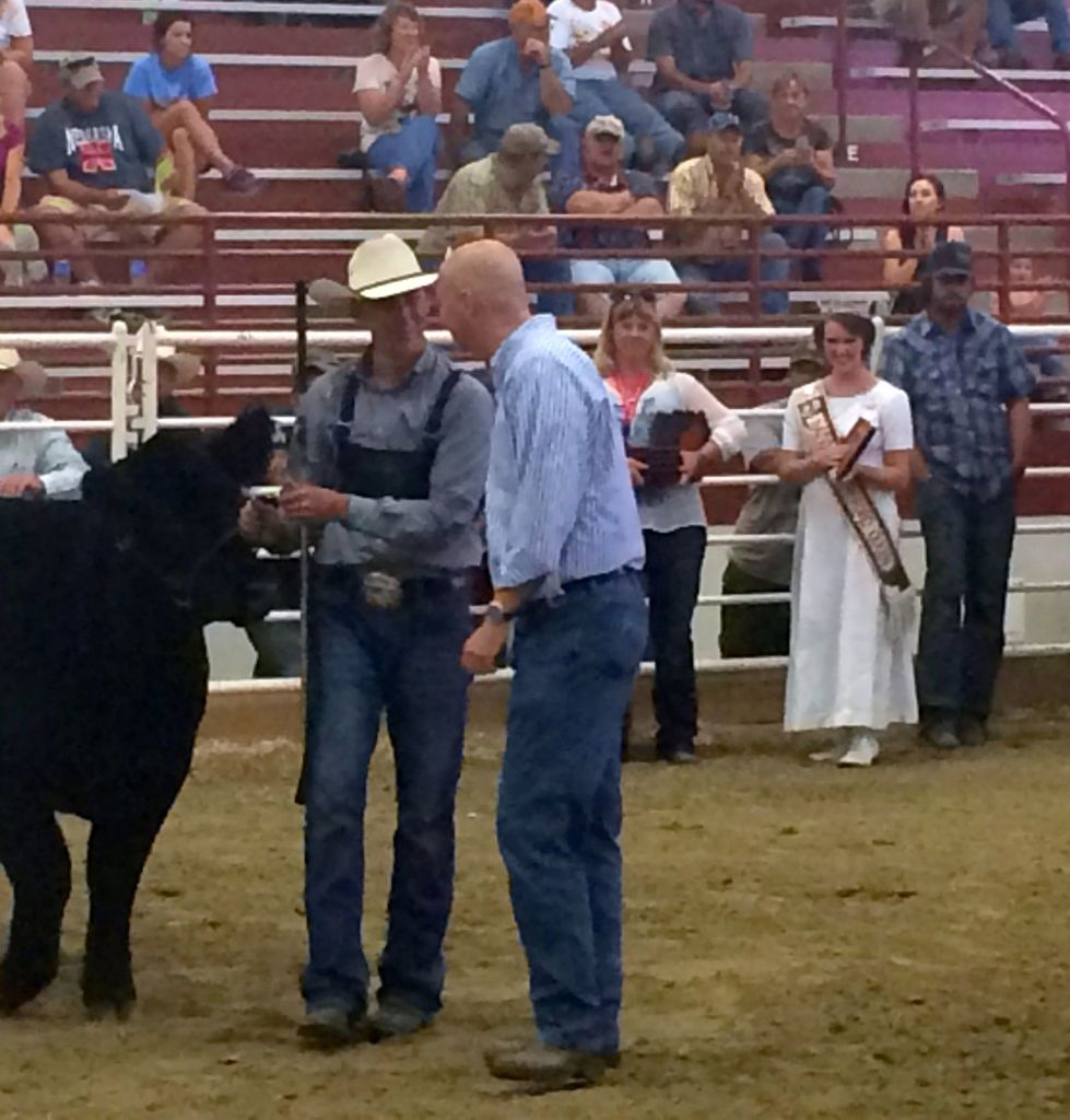 Gov. Ricketts acts as Interim Judge in Supreme Heifer and Bull Championship