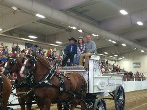 State Ag Dr. premiered at final Draft Horse Show