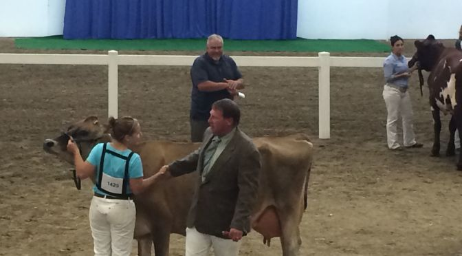 Courtesy/ Nebraska State Fair.   Open Class Dairy Show 2015.