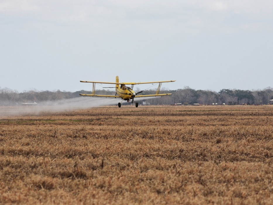 Crop-dusting plane runs out of fuel and crashes, pilot unhurt