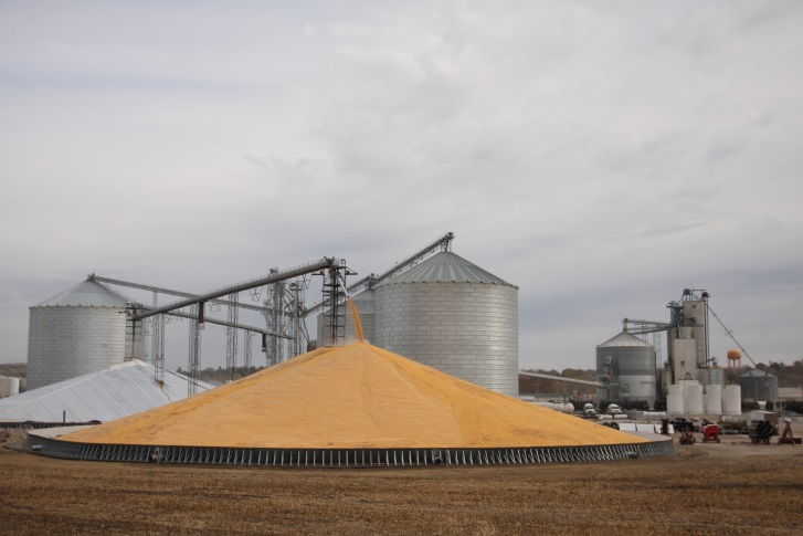 Corn Prices Gain Ahead of Crop Report; Soybeans Mixed