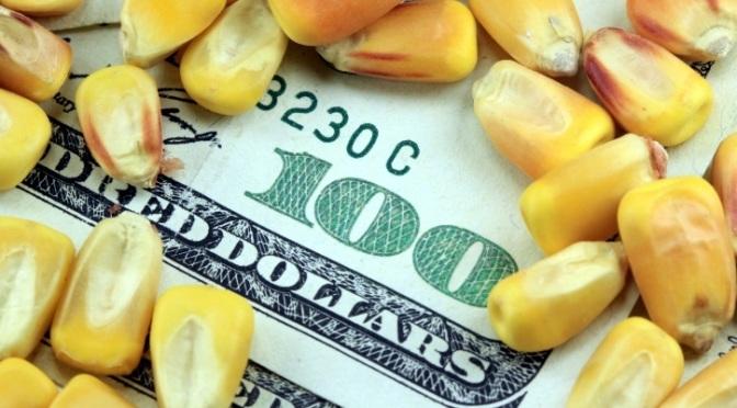STOCK_cornmoney