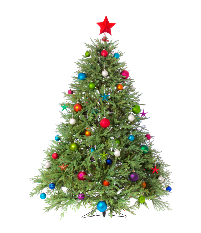 christmas trees and lights can be recycled in lexington