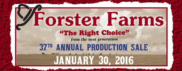 Forster Farms- Cattleman-ProductionSale2016