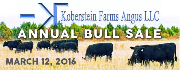Koberstein-CattlemanPage-BullSale2016-Slider-2
