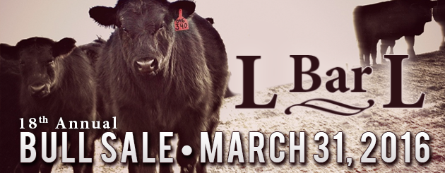 L-Bar-L-Angus- Cattleman Slider-Sale2016