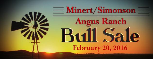 Minert-SimonsonAngus-CattlemanPage-Slider-BullSale-2016