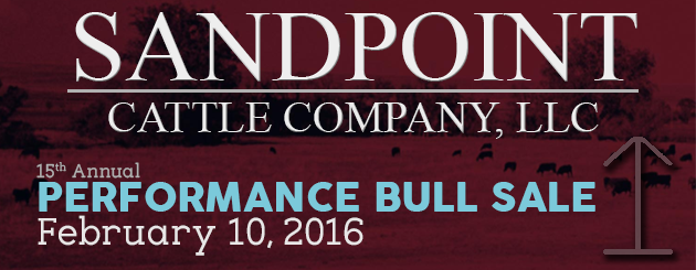 Sandpoint Cattle Co - Cattleman Slider- Bull Sale-2016