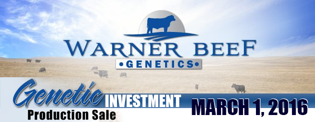 WarnerBeefGenetics-CattlemanPage-ProductionSale-2016