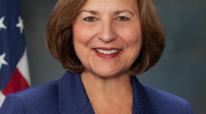 Deb Fischer US Senate