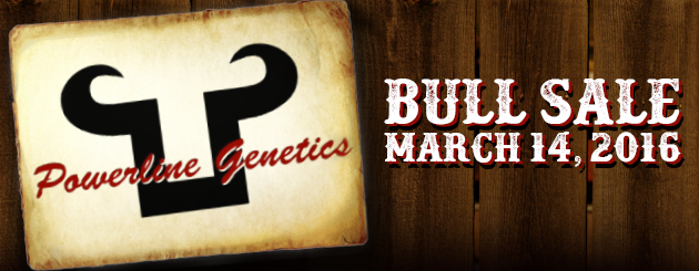 PowerlineGenetics-CattlemanPage-BullSale-March14-2016-Slider