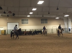 (AUDIO) Nebraska Cattlemen's Classic Features Horses Opening Weekend