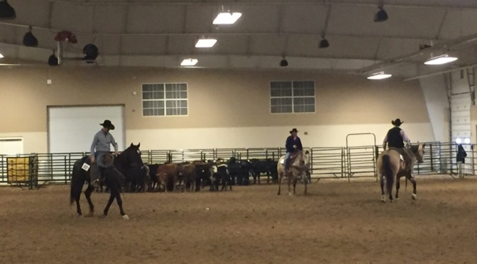 Ranch horses showing their stuff opening weekend at the Nebraska Cattlemen's Classic. (RRN Photo)