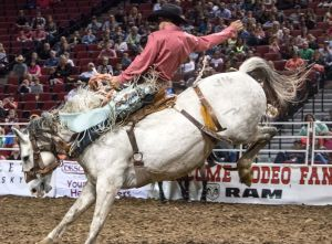 Pro Rodeo coming to Pinnacle Bank Arena