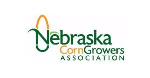NE Corn is Now Accepting Applications for Seven College Internships