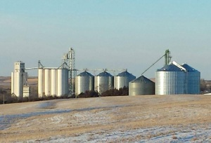 Elevator Manager Under Investigation After Millions Go Missing From Grain Cooperative