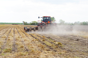 USDA Crop Progress Numbers Bearish for Wheat, Soybeans; Neutral for Corn