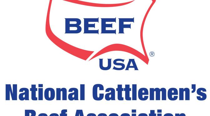 NCBA Logo Verticle