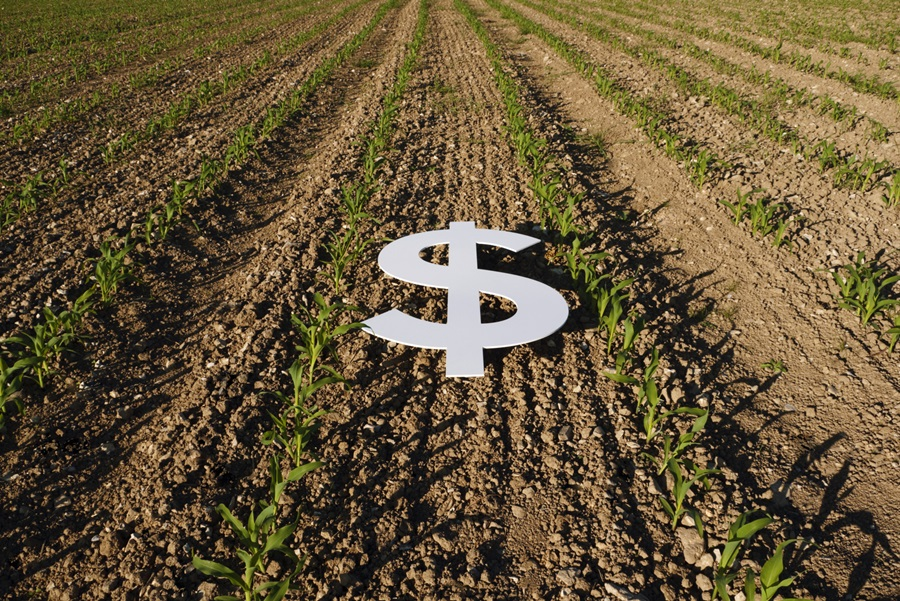 Farmer's Share of the Food Dollar Falls to All-Time Low