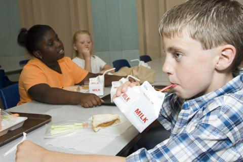 NMPF, IDFA Support Legislation Allowing Whole Milk in School Meals